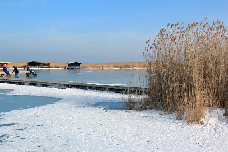 Rust neusiedlersee winter  Burgenland