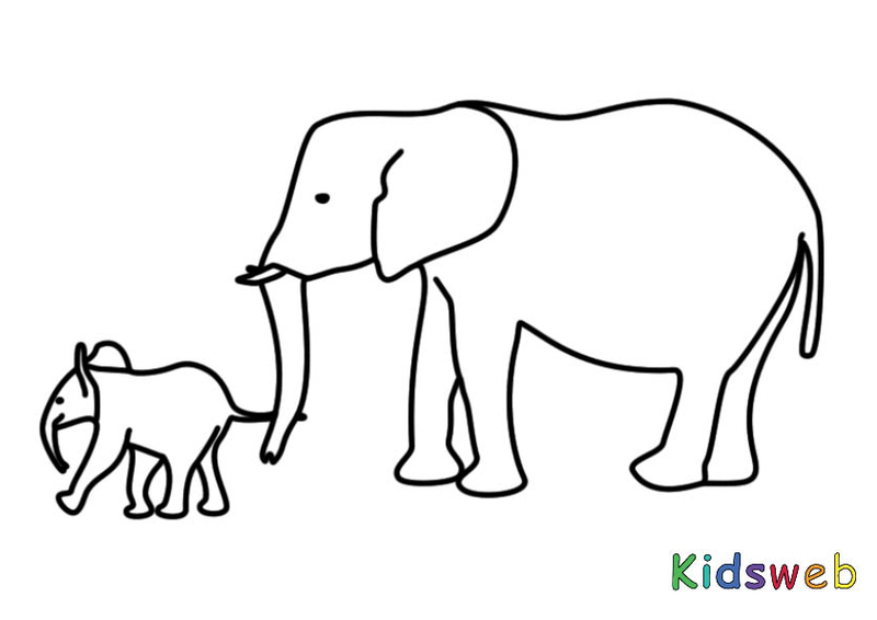 elefant mit kalb